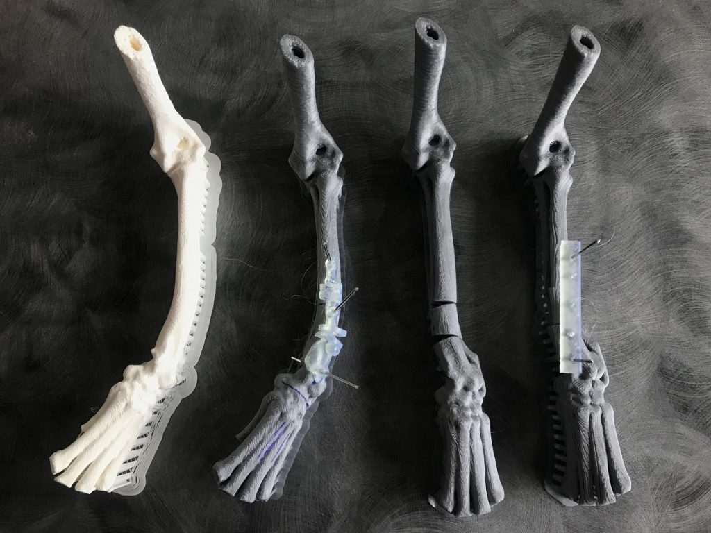 3D printing of bones for dog leg