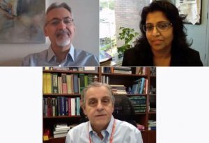 zoom meeting of the fourth bioelectronic medicine summit